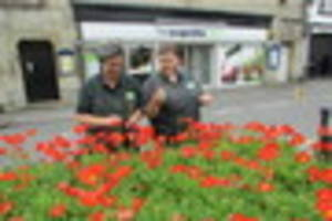 bring a flower to first world war service